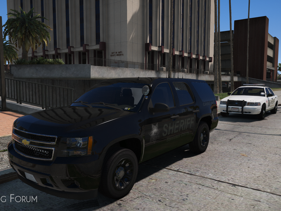 Courthouse Duty